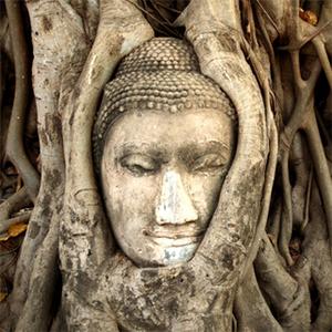 Self Realization & Meditation with the Bhagavad Gita ◦ 18:28