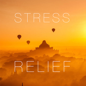 Stress Relief Meditation to Let Go ◦ 21:47